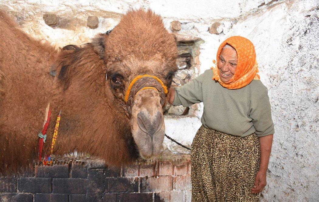 Bodrum'un kadın devecileri